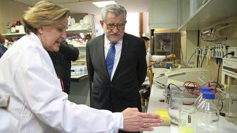 La Profesora Llanos Palop explica al Consejero el trabajo en el laboratorio